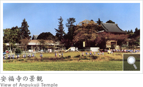 安福寺の景観 View of Anpukuji Temple